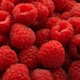National-Processed-Raspberry-Council