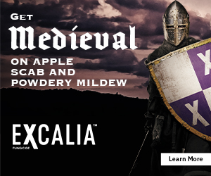 Medieval Powdery Mildew