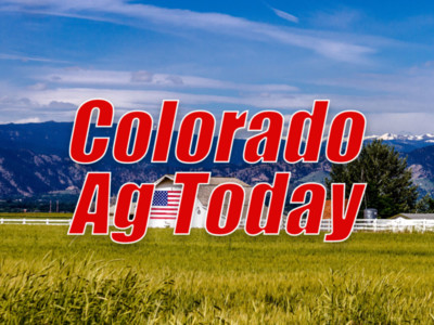 Forecast for Ag in Colorado