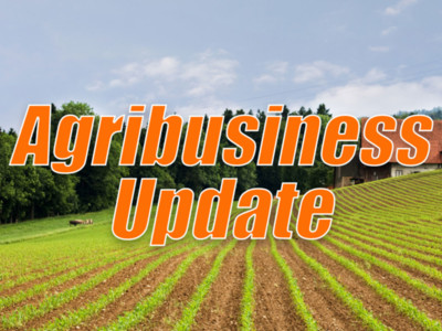 AFS in China Slows and NFU Unhappy with RFS Obligations