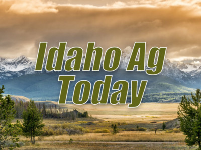Idaho beef ranchers distribute food