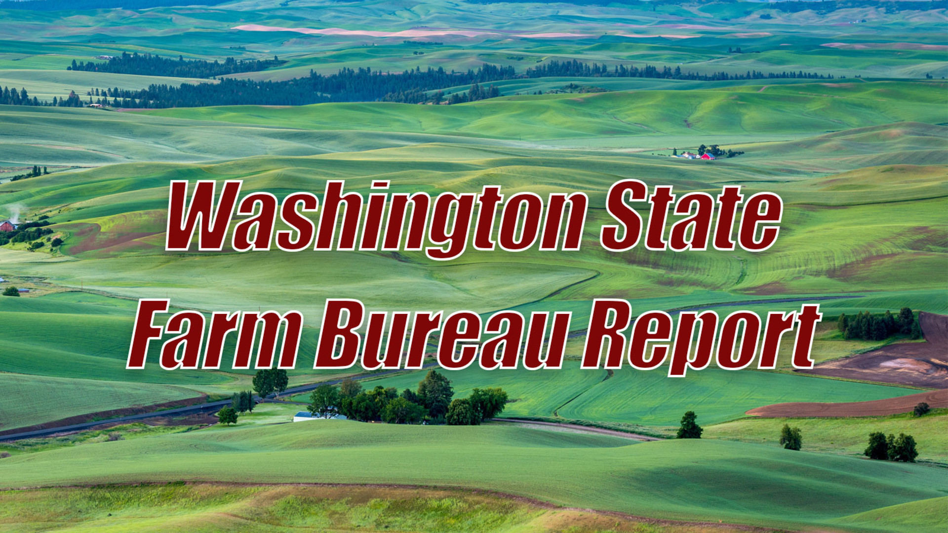 Washington Ag & The Farm Bill