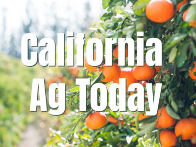 California Agriculture Distances but Still Delivers