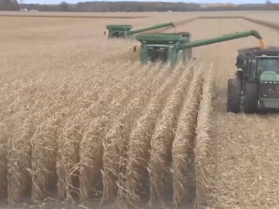 U.S. Corn Harvest the Second Slowest in Last 25 Years