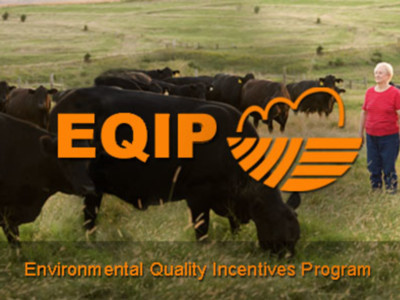 USDA Seeks Input on Environmental Quality Incentives Rule