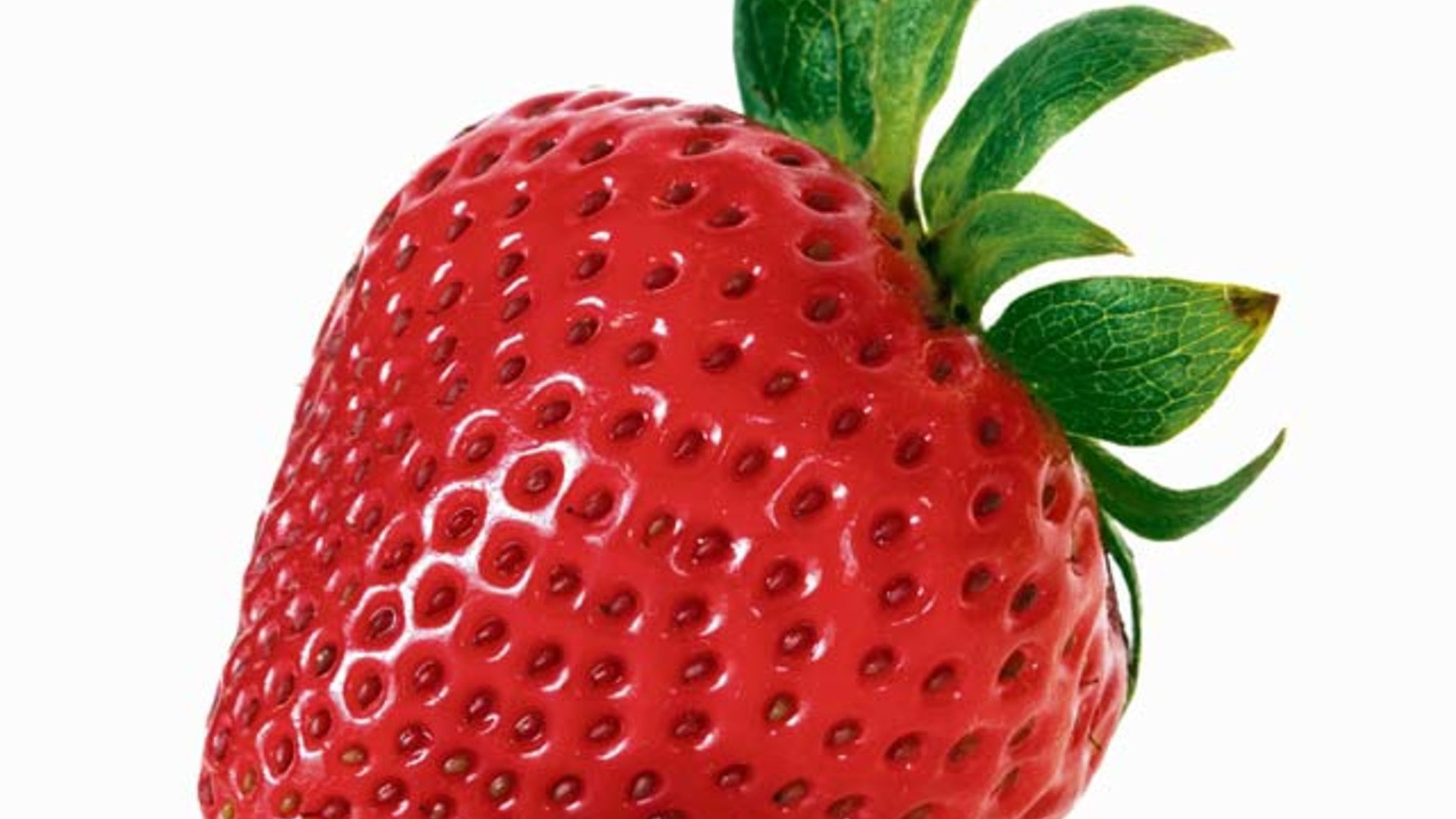 Negotiations with India and New Strawberry Variety