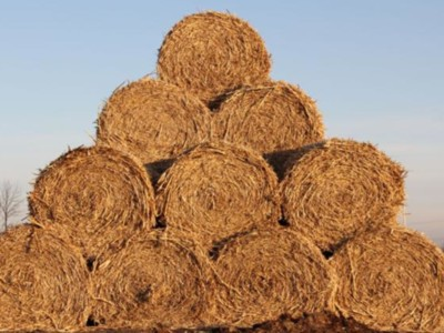 Hay Stock Up from Last Year but Still Below Average