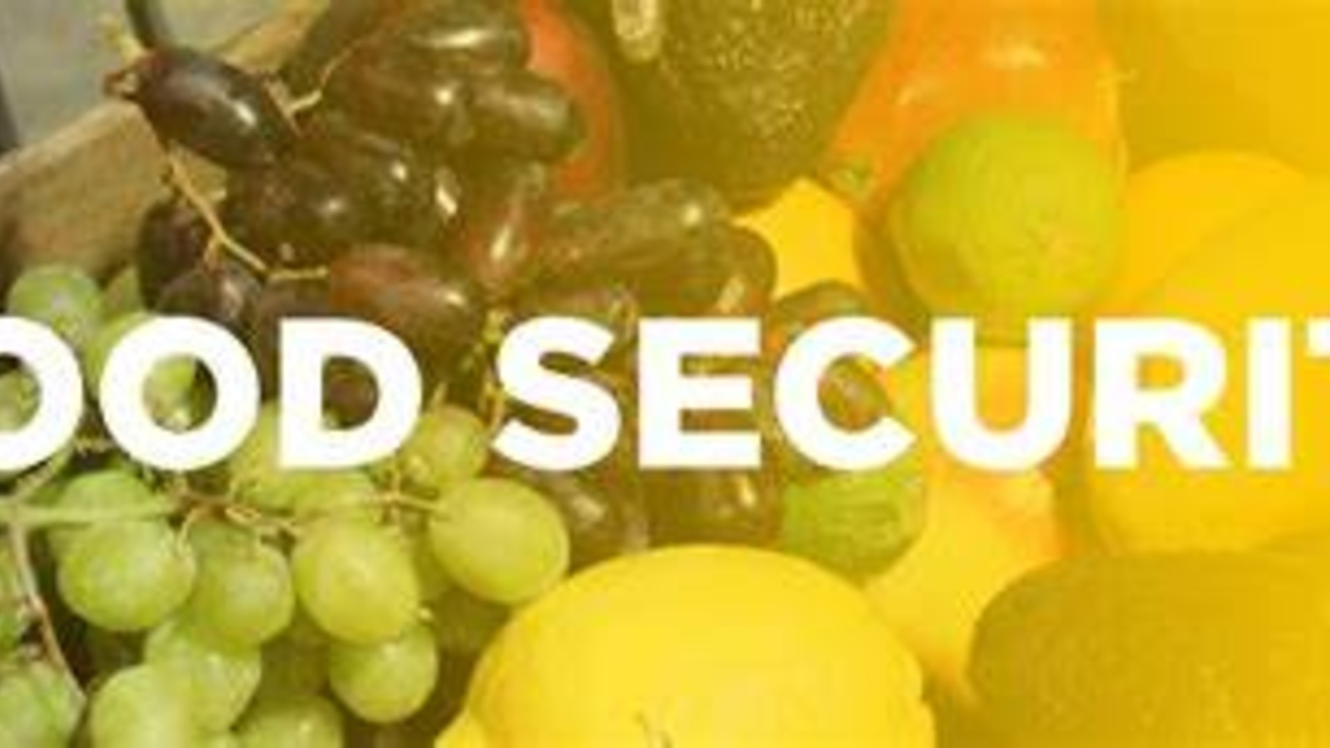 Food Security-National Security Pt 1