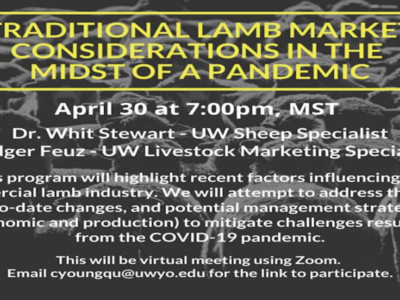 University of Wyoming Lamb Market Webinar