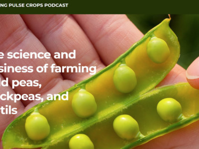New Podcast Focuses on Growing Pulse Crops