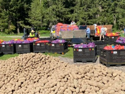 Woodinville Hauls Potatoes Pt 2