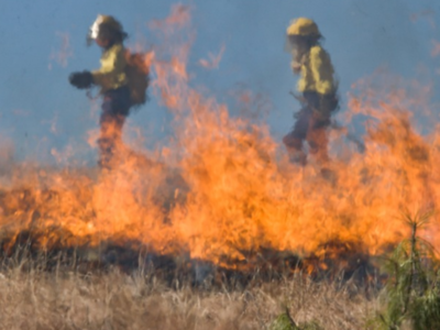 NIFC Preps for Elevated Wildfire Season