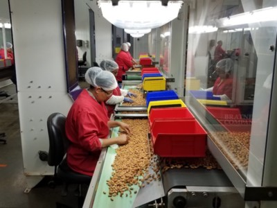 Distancing Line Employees In Nut Processing Facility Due to COVID-19