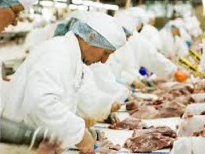 Meat Packing Plants Running Near Capacity