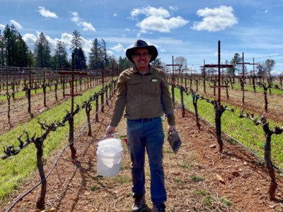 Napa Valley Carbon Farming