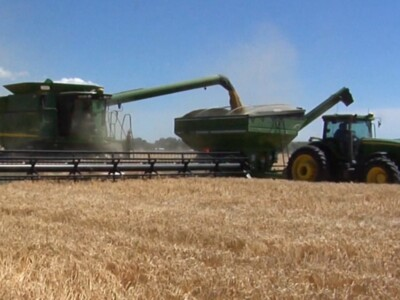 Molson Coors Barley Harvest Underway in Colorado, Idaho, Montana & Wyoming