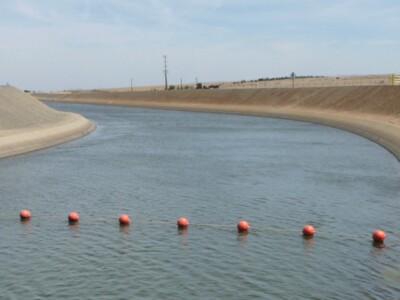 Westlands Water District Has Robust Water Transfer Programs for Growers