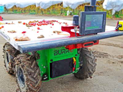Automation in Specialty Crops