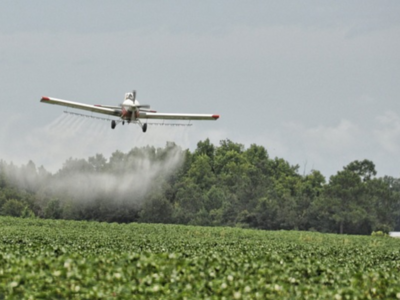 EPA Report on Chlorpyrifos Expected Soon