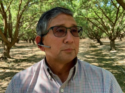 Work Continues In Almond Orchards