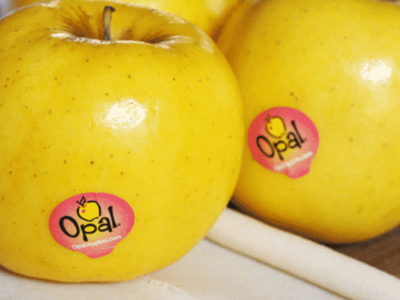 Opal Apples In Stores Pt 1