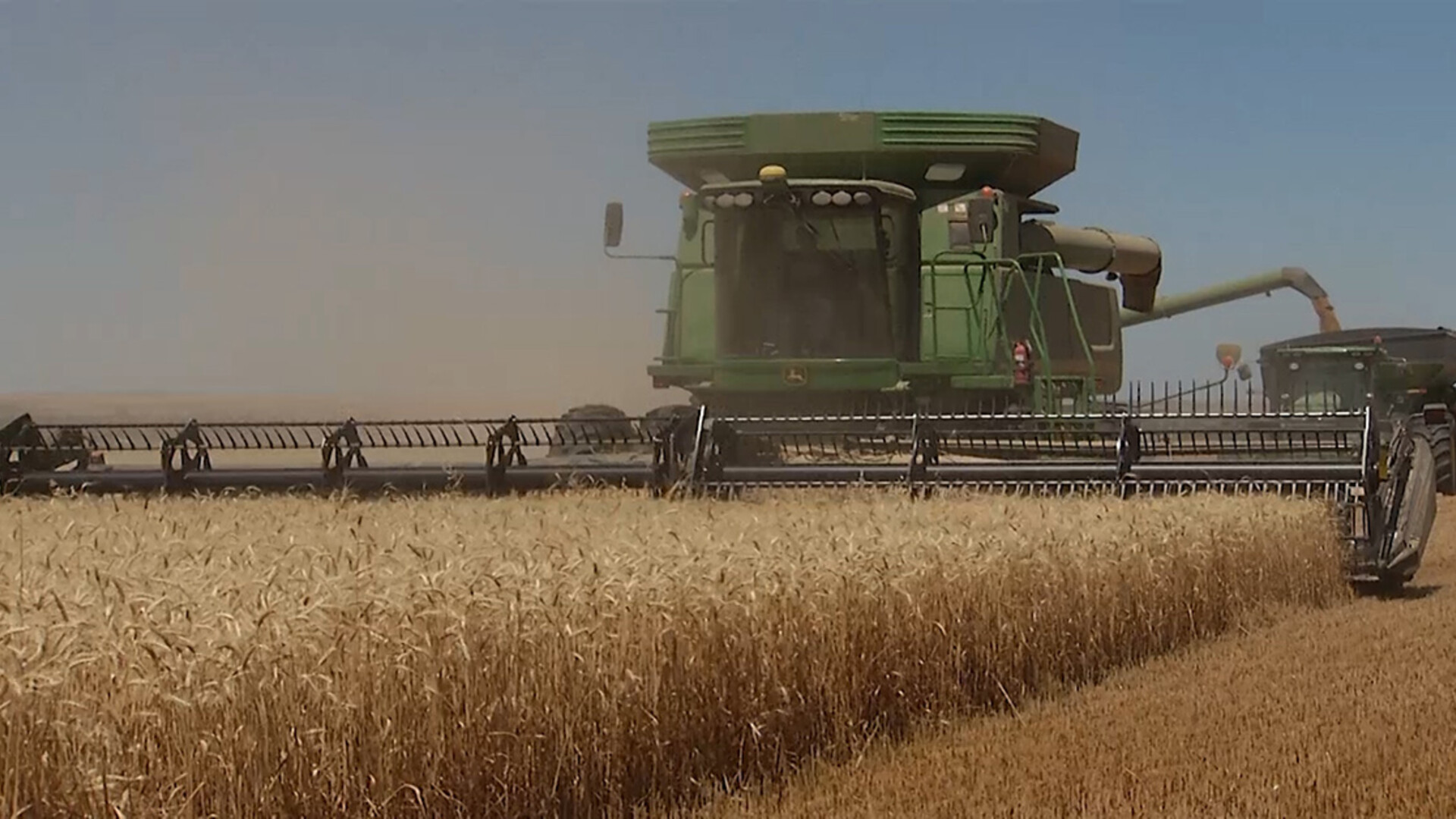 Entries Now Accepted for National Wheat Yield Contest
