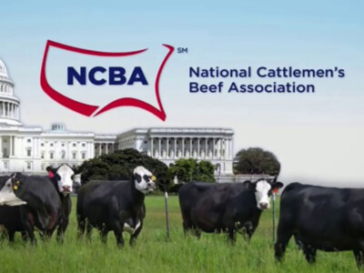 NCBA Sets Policy for 2021