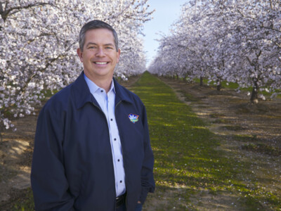 Blue Diamond Growers Innovates Almond Products