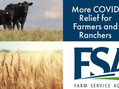 USDA Rolls Out New CFAP Aid