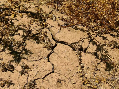 White House Launches Drought Relief Working Group